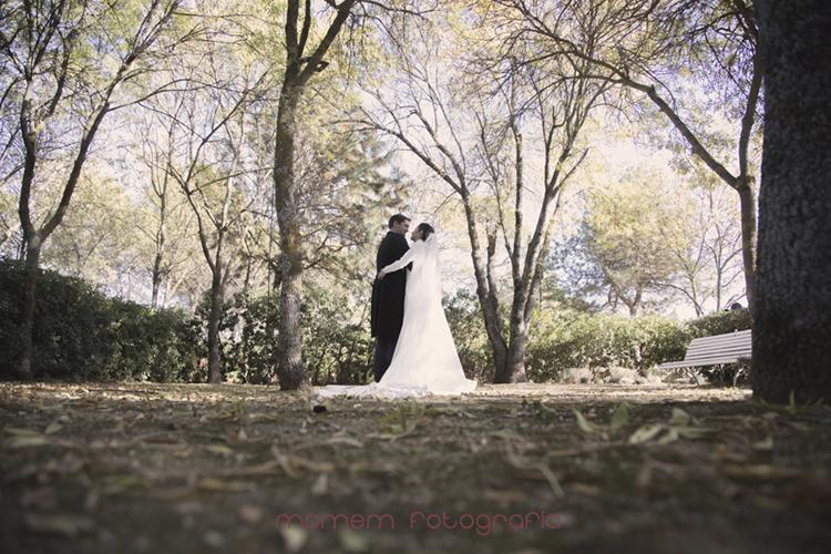 vista desde suelo con hojas novios al fondo abrazados-fotografías de boda